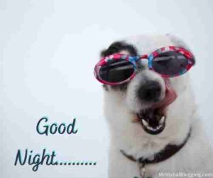 good night images funny