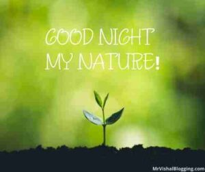 nature good night images