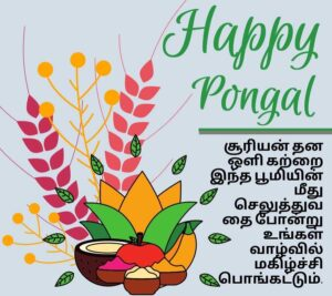 happy pongal wishes images in tamil