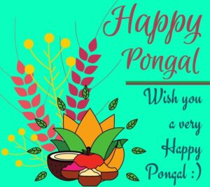 happy pongal images hd download