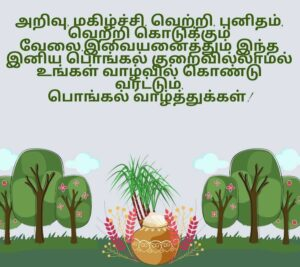 wish you happy pongal images in tamil