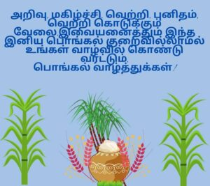 happy pongal hd photos free download