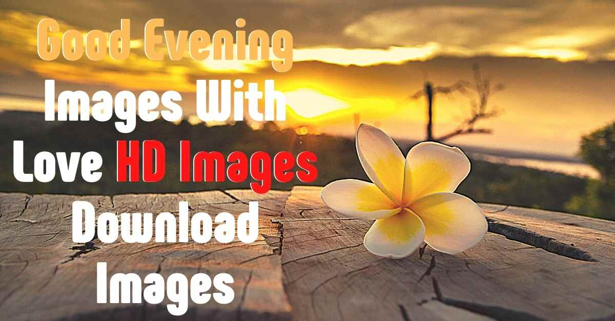 good evening images with love, good evening images download, good evening hd images