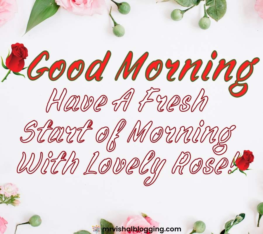 good morning flower images free download for WhatsApp