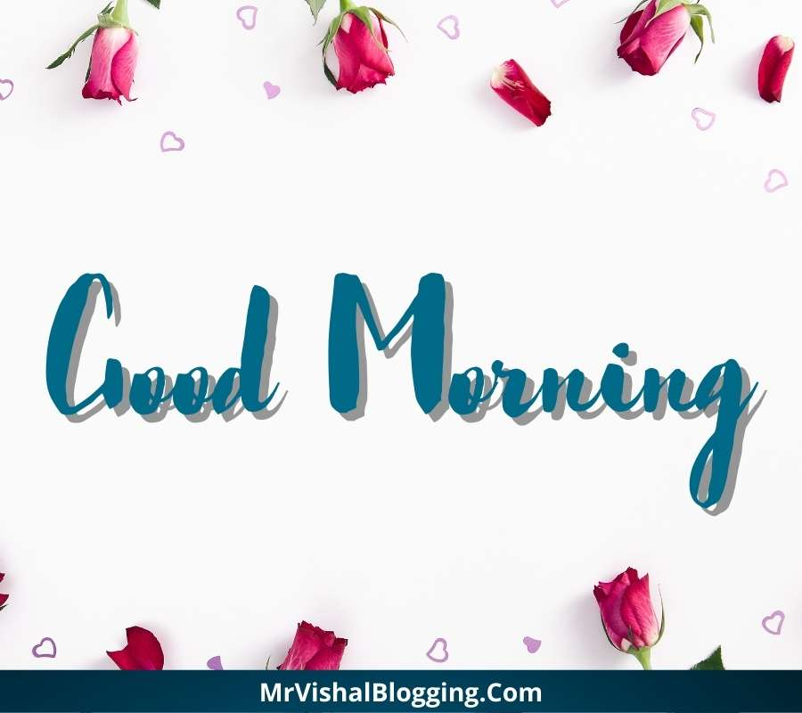 good morning rose images free download