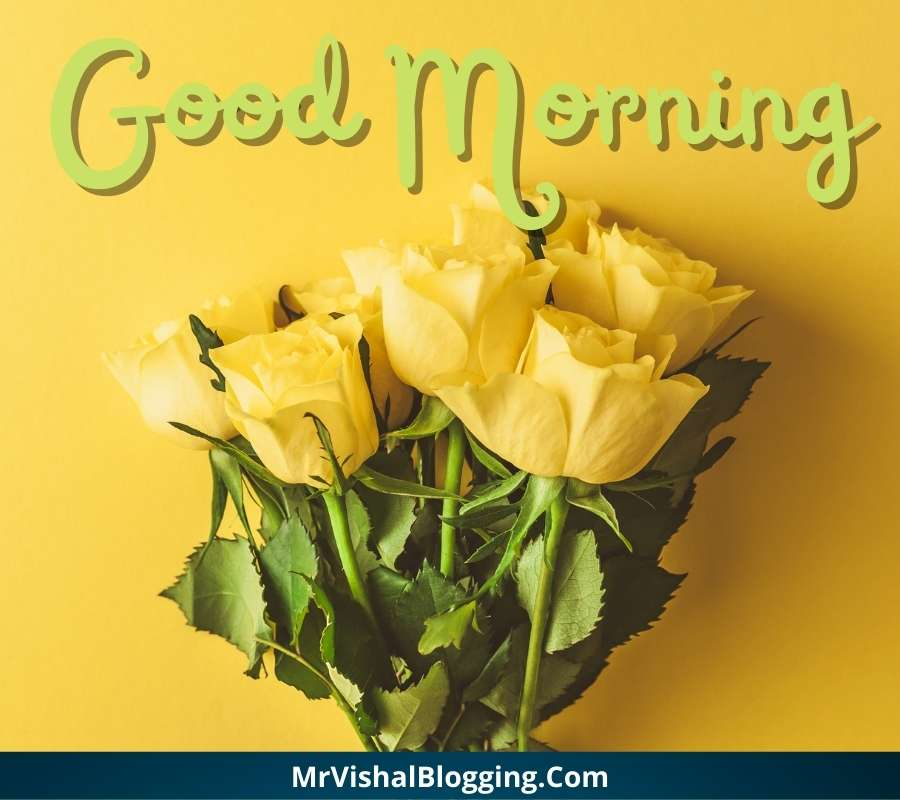 good morning yellow rose images download