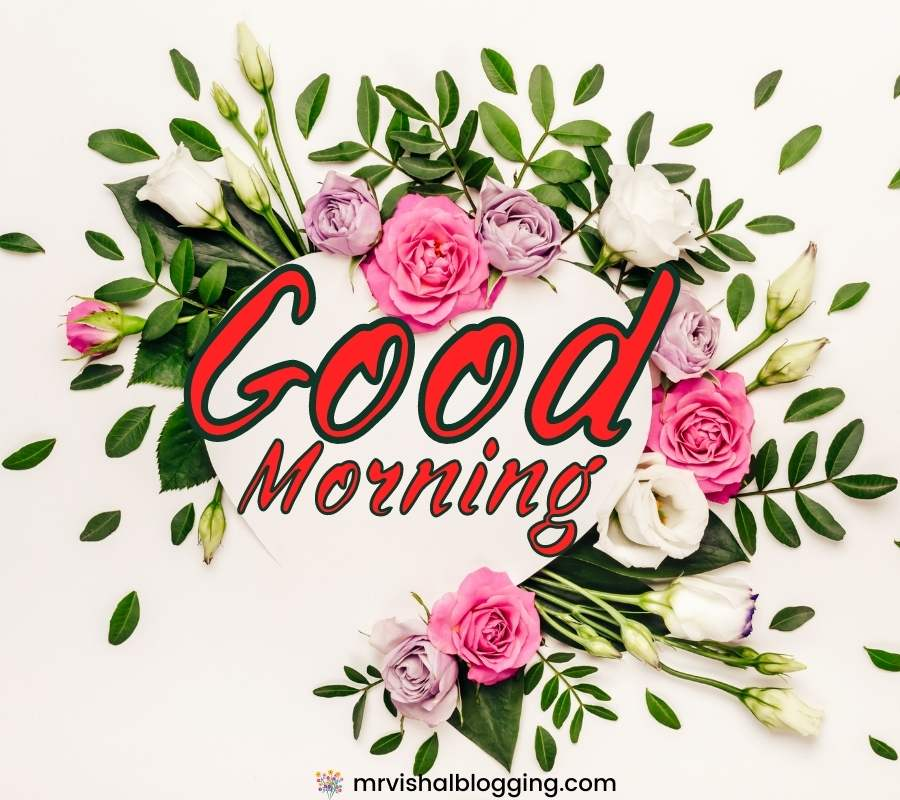 Good morning flower pictures download