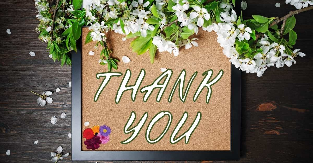 thank you images with flowers, thank you flowers images