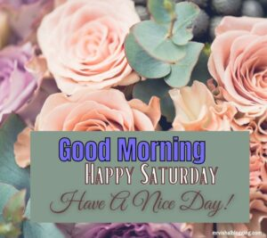 Happy Saturday good morning Greetings with have a nice day