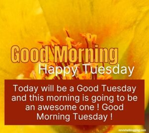 good morning happy Tuesday flowers images