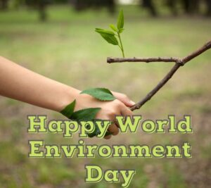 happy world environment day HD pictures