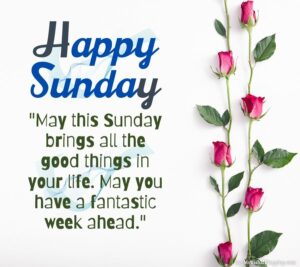 happy Sunday pictures HD free download