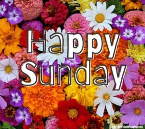 happy sunday hd images