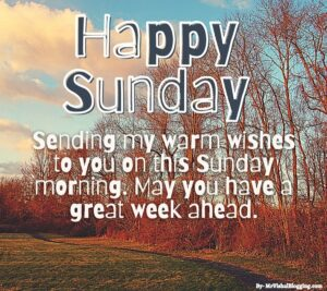 happy Sunday pics HD Download Free For Friends