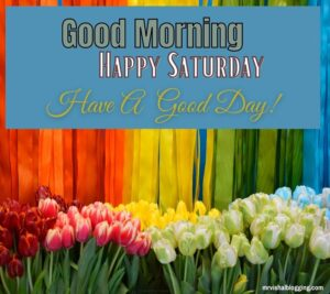 Happy Saturday good morning Greetings with have a good day
