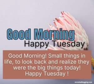 happy Tuesday good morning images download