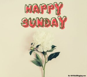 happy sunday pictures hd download