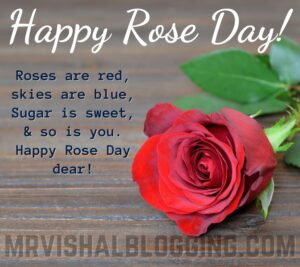 happy rose day pics photos download with SMS