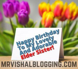 happy birthday elder sister wishes pics
