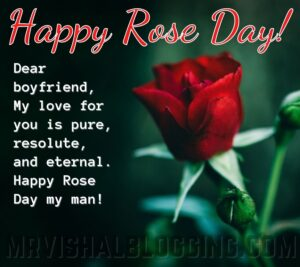 happy rose day images download HD download quotes