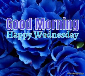 Good Morning Happy Wednesday Images 2021