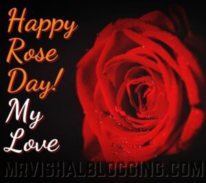 happy rose day pics with quotes