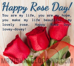 happy rose day HD pics download with quotes