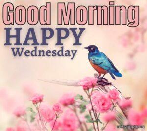 Good Morning Happy Wednesday God Images