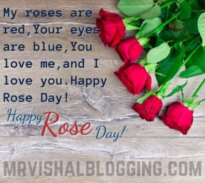 happy rose day HD pictures 2021 download with wishes