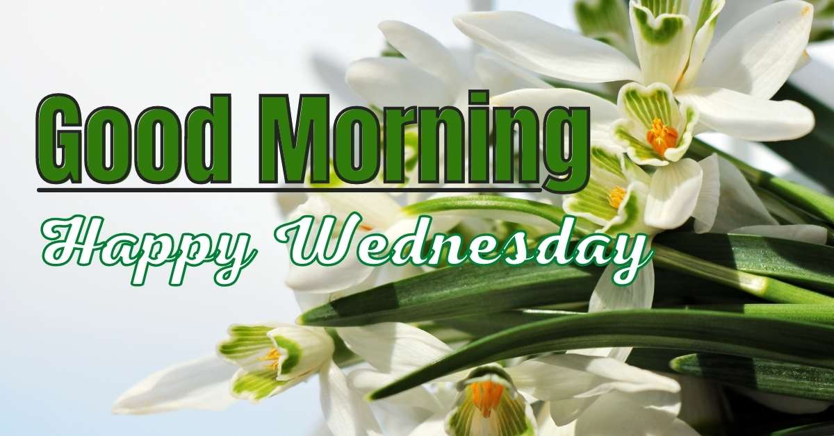 Good Morning Happy Wednesday Images And Quotes HD Download