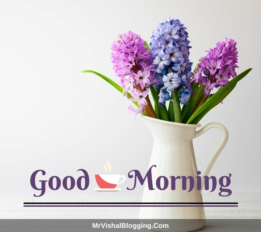 good morning beautiful flowers pictures