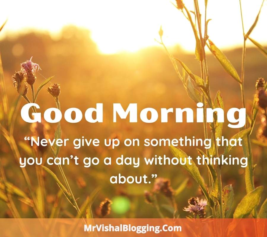 Good Morning HD Photos With Successful Words