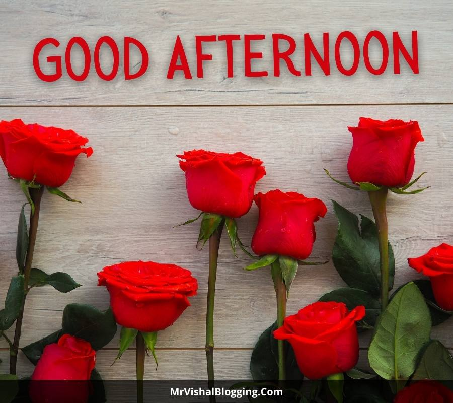 good afternoon images with red roses