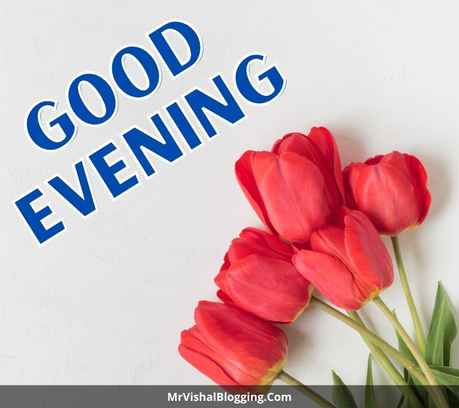 good evening pictures with flowers