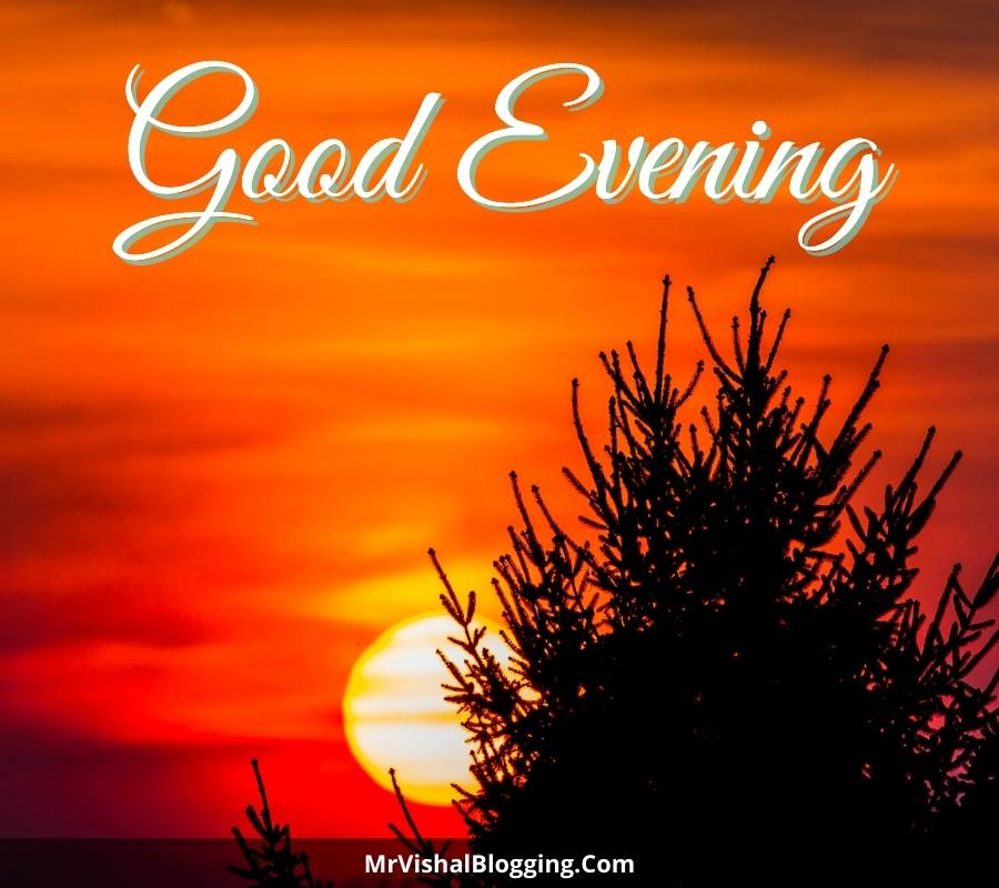 good evening pictures images photos