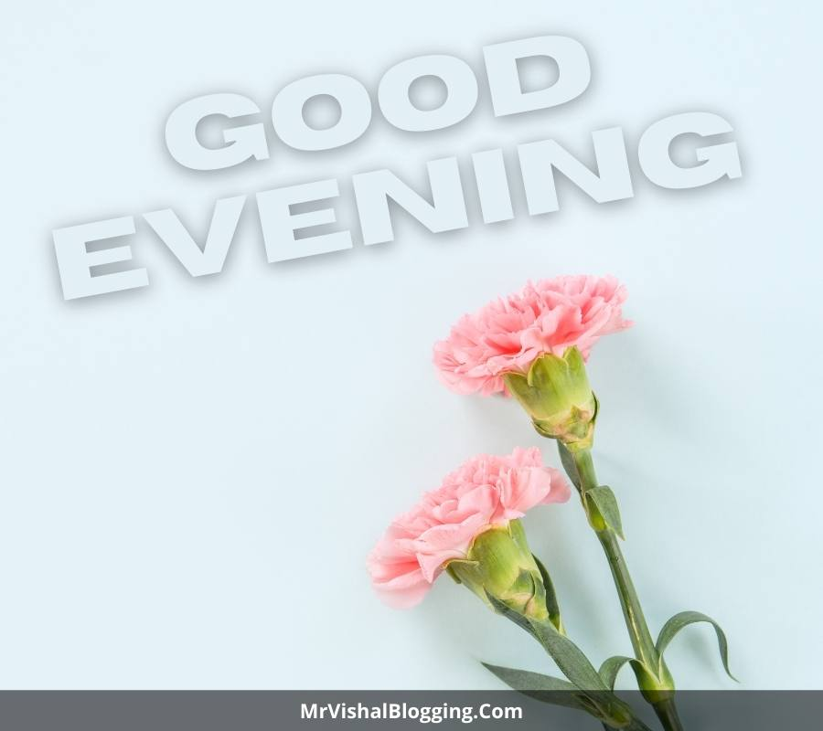 good evening pics with flowers