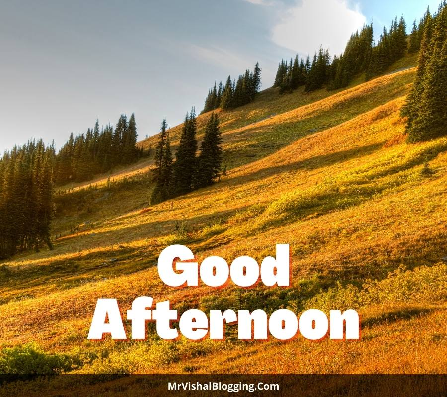images of good afternoon