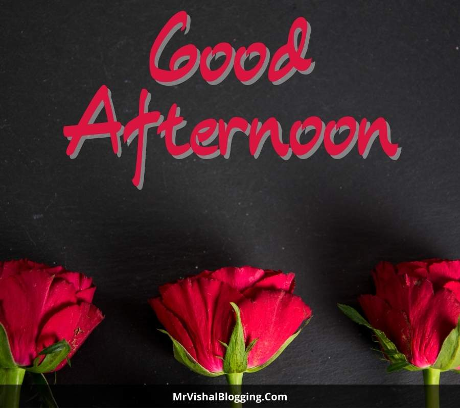 good afternoon love pics