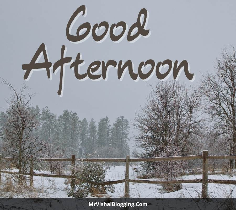 good afternoon pictures download