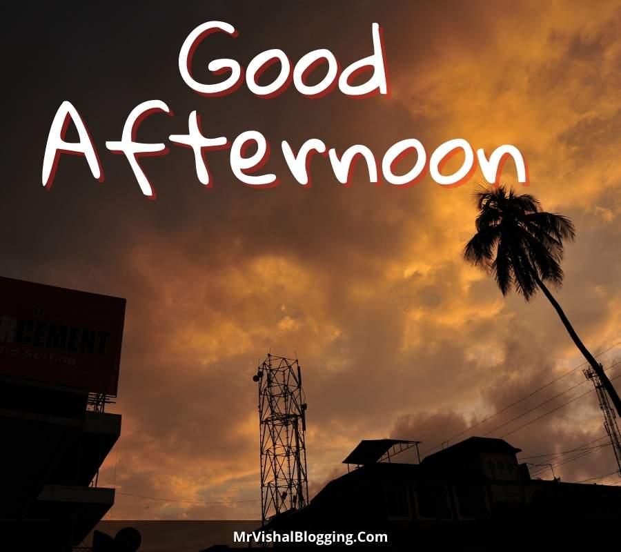 good afternoon beautiful photos