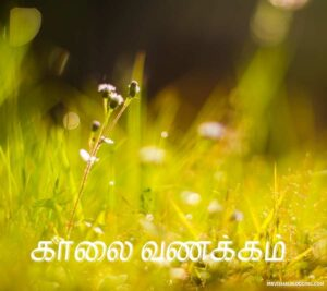devotional good morning images in tamil
