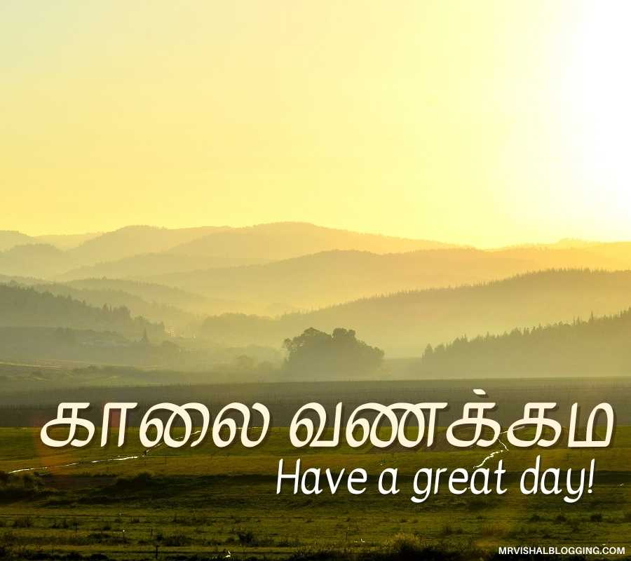 Good Morning Pictures For Whatsapp In Tamil