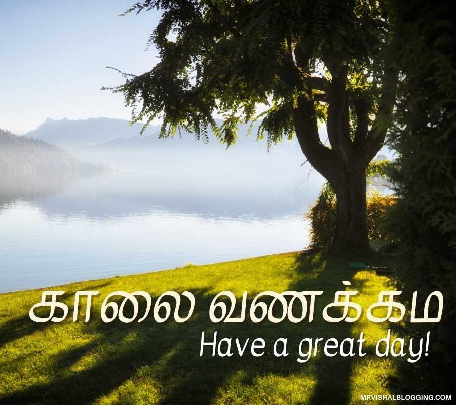 Good Morning Wishes In Tamil Pictures