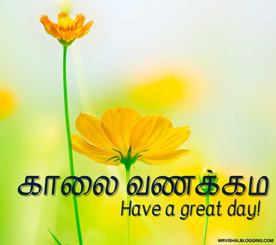 Good Morning Quotes In Tamil With Pictures