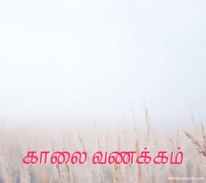 good morning birds images in tamil