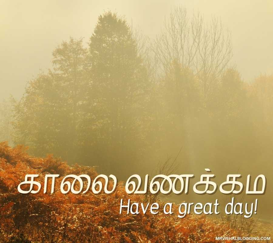 Good Morning Pictures With Nature In Tamil