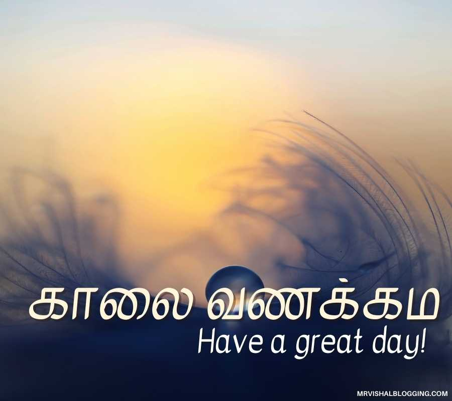Good Morning Photos For Whatsapp In Tamil