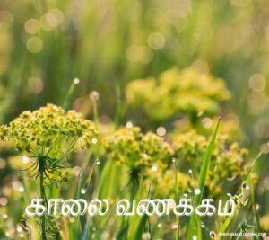 tuesday good morning god images in tamil