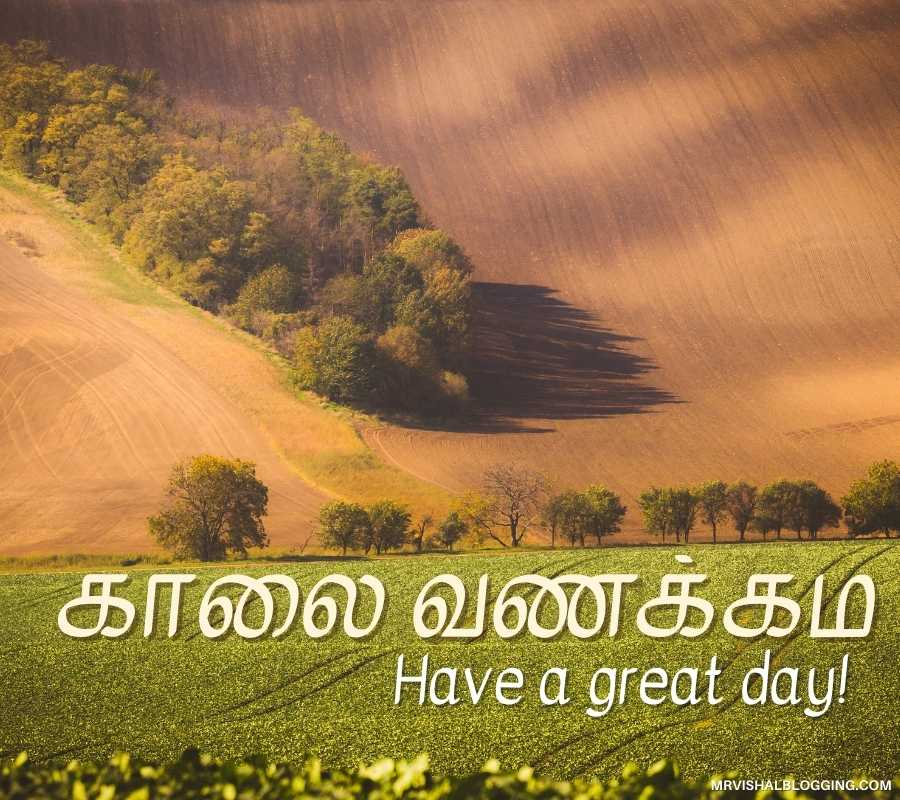 Good Morning Love Photos In Tamil