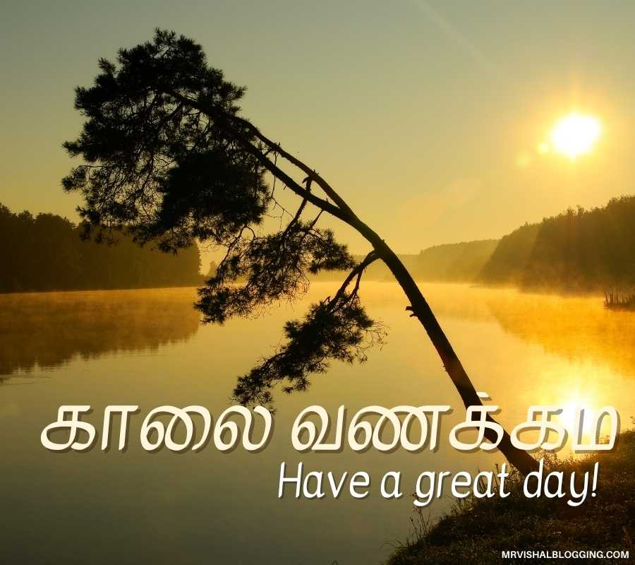 Good Morning Photos In Tamil Free Download